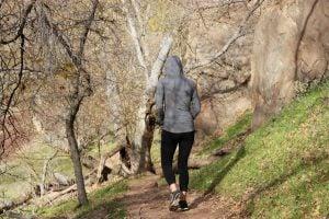 woman-walking-trail-trees